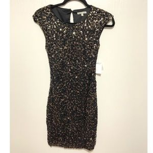 NEW WITH TAGS Sparkle Dress